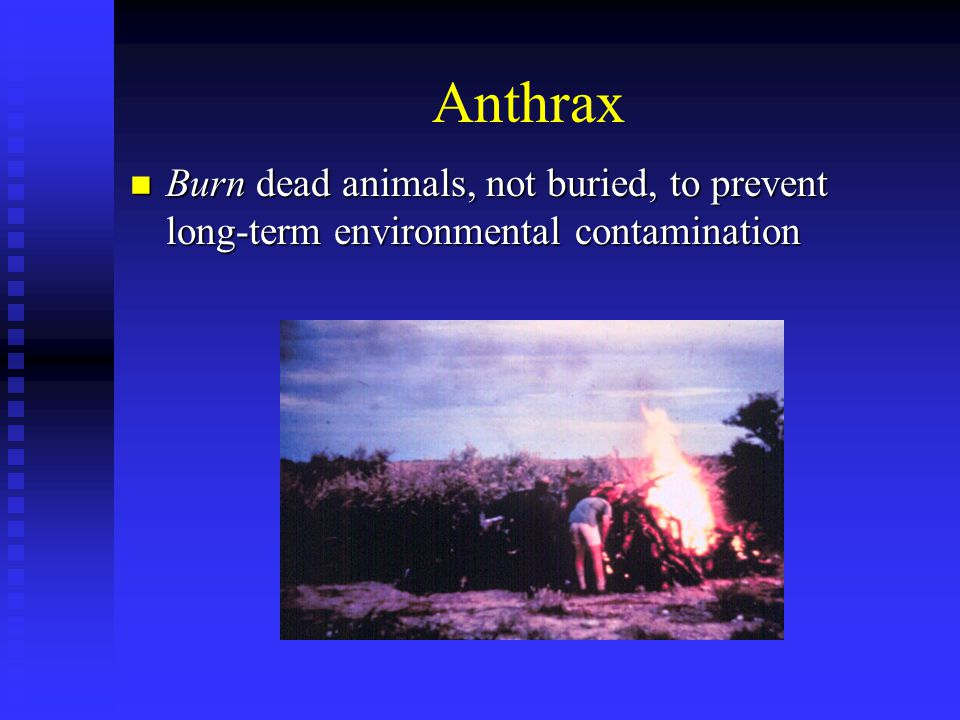 Smallpox Exanthem from vaccination Exanthem from vaccination  1/100,000  Vaccinia rash or outbreak of sores  Generalized vaccinia  Erythema multiforme http://www.bt.cdc.gov/agent/smallpox /