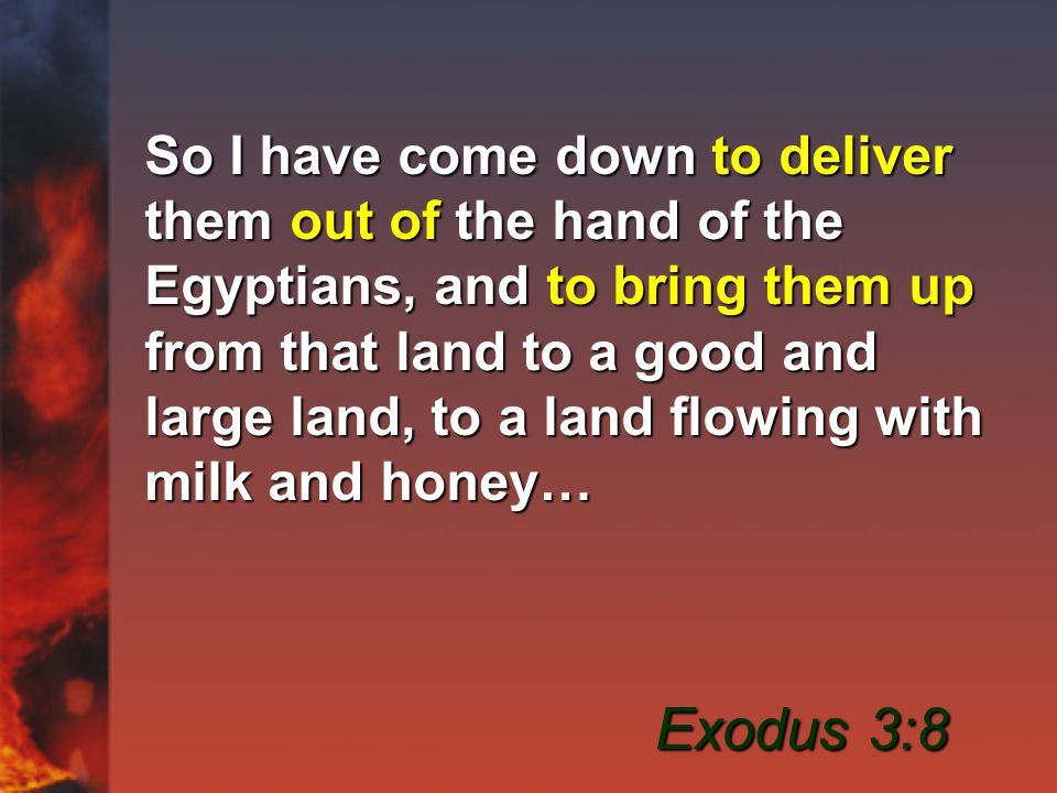 So I have come down to deliver them out of the hand of the Egyptians, and to bring them up from that land to a good and large land, to a land flowing with milk and honey… Exodus 3:8