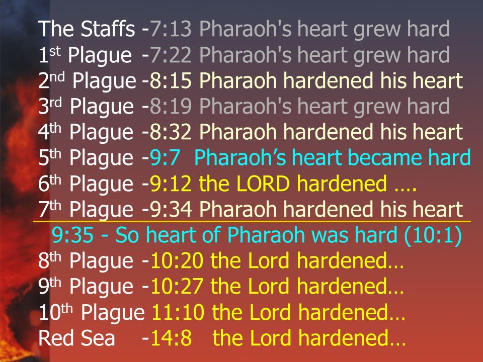The Staffs-7:13 Pharaoh s heart grew hard 1 st Plague-7:22 Pharaoh s heart grew hard 2 nd Plague-8:15 Pharaoh hardened his heart 3 rd Plague-8:19 Pharaoh s heart grew hard 4 th Plague-8:32 Pharaoh hardened his heart 5 th Plague-9:7 Pharaoh's heart became hard 6 th Plague -9:12 the LORD hardened ….