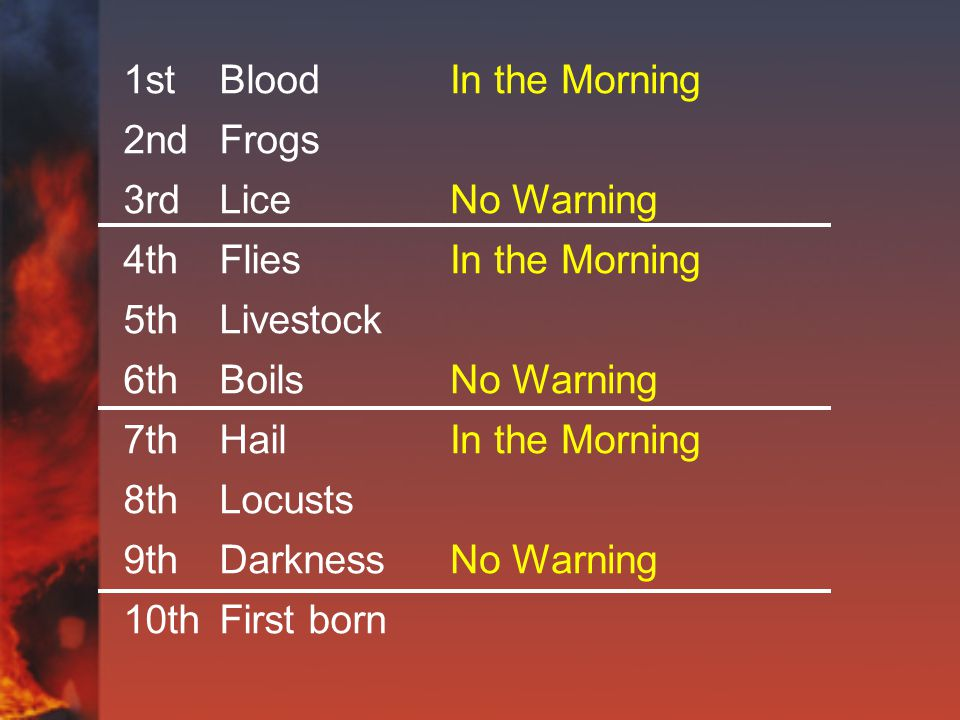 1stBlood 2ndFrogs 3rdLice 4thFlies 5thLivestock 6thBoils 7thHail 8thLocusts 9thDarkness 10thFirst born In the Morning No Warning In the Morning No Warning In the Morning No Warning