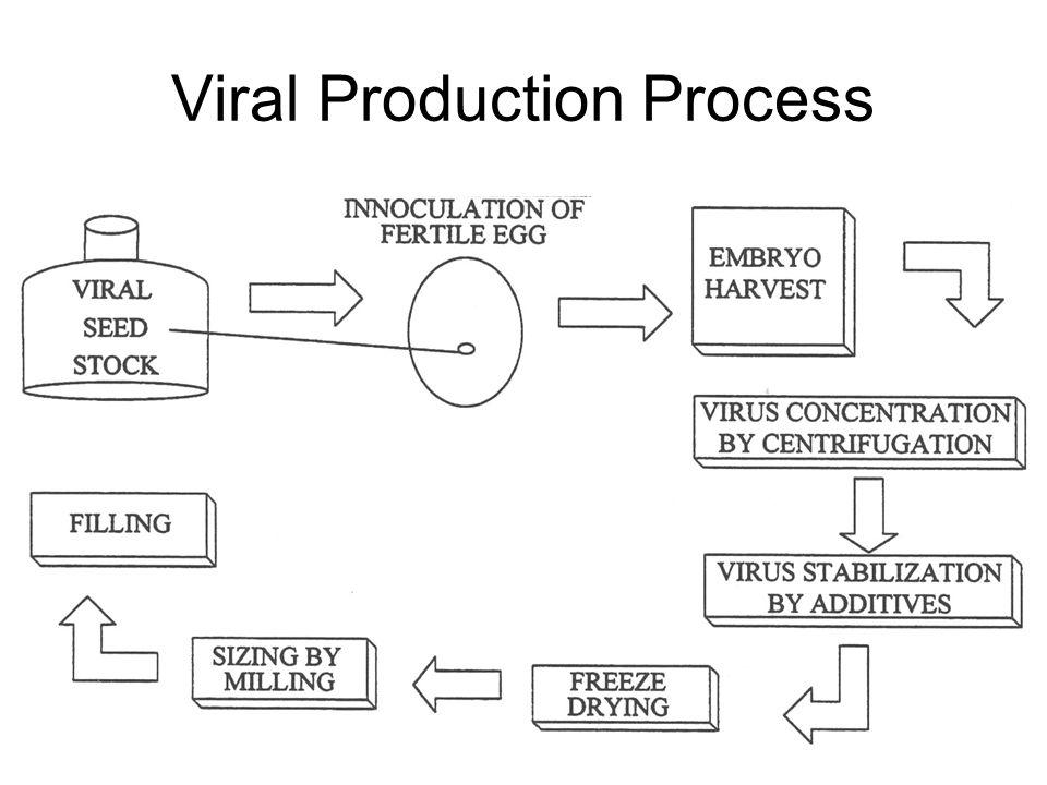 Viral Production Process