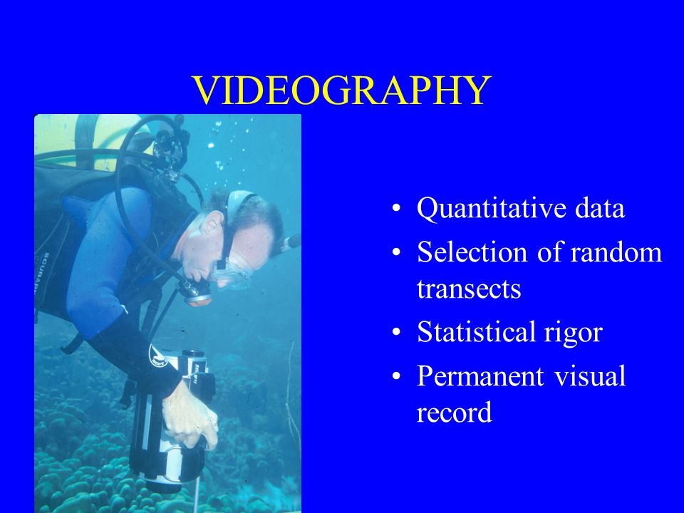 VIDEOGRAPHY Quantitative data Selection of random transects Statistical rigor Permanent visual record