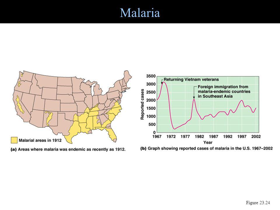Malaria Figure 23.24