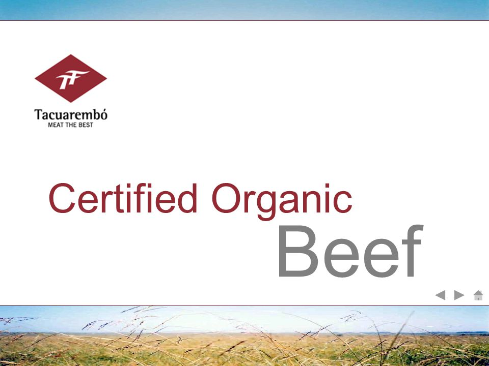 Beef Certified Organic