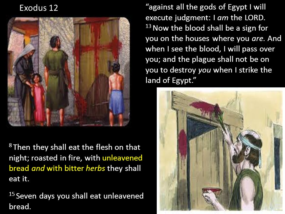 4 Now the Passover, the feast of the Jews, was at hand.