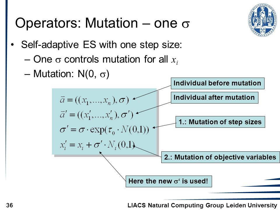 LIACS Natural Computing Group Leiden University36 Operators: Mutation – one  Self-adaptive ES with one step size: –One  controls mutation for all x i –Mutation: N(0,  ) Individual before mutationIndividual after mutation1.: Mutation of step sizes 2.: Mutation of objective variables Here the new  ' is used!