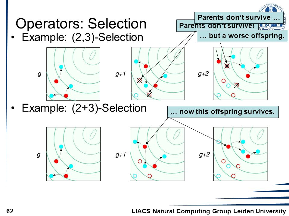 LIACS Natural Computing Group Leiden University62 Operators: Selection Example: (2,3)-Selection Example: (2+3)-Selection Parents don't survive!Parents don't survive …… but a worse offspring.… now this offspring survives.
