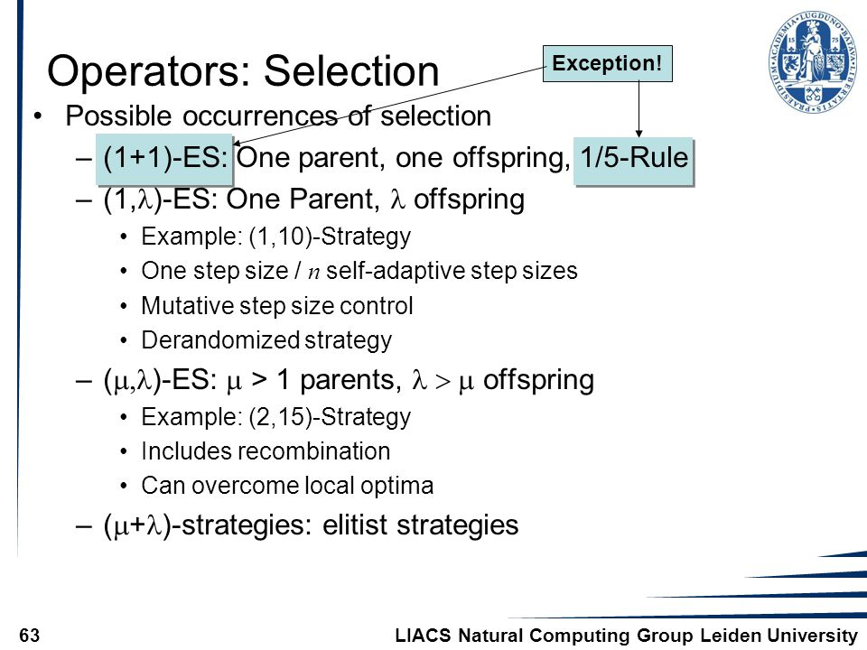 LIACS Natural Computing Group Leiden University63 Exception.