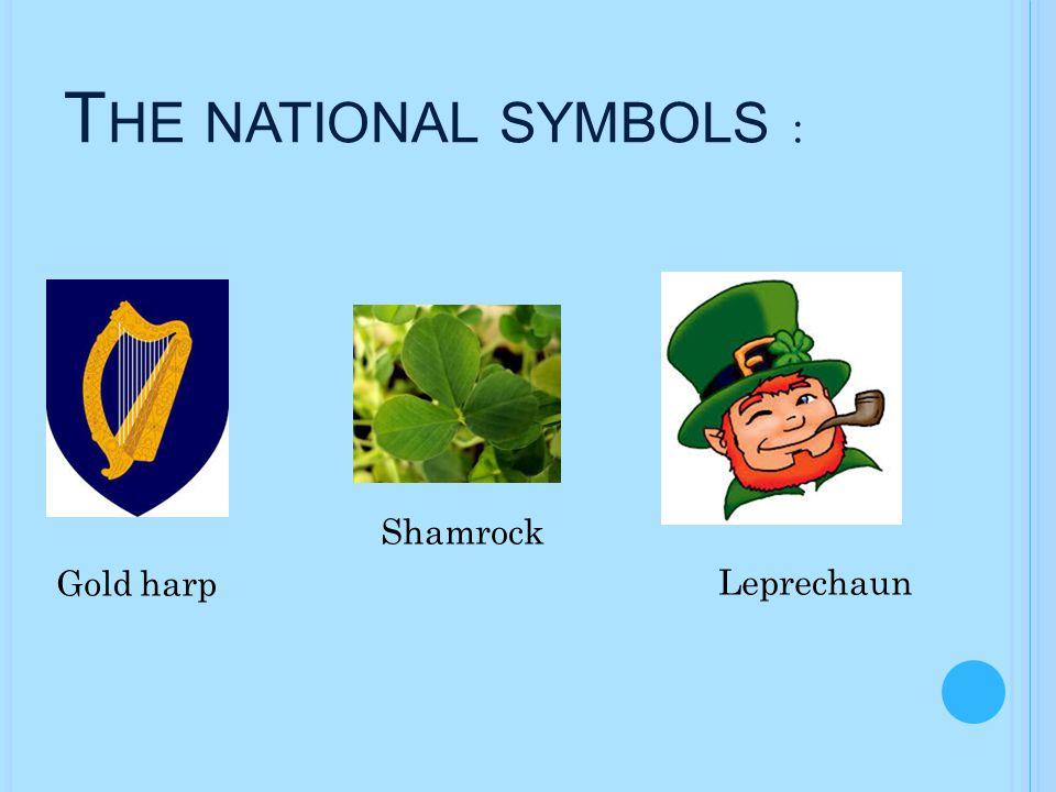 H URLING - I RISH SPORT Hurling is Irish sport.It is a team game.