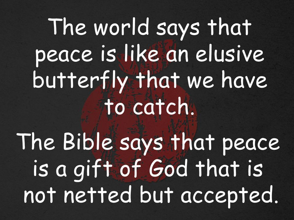 The world says that peace is like an elusive butterfly that we have to catch.