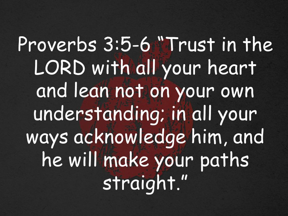 Proverbs 3:5-6 Trust in the LORD with all your heart and lean not on your own understanding; in all your ways acknowledge him, and he will make your paths straight.