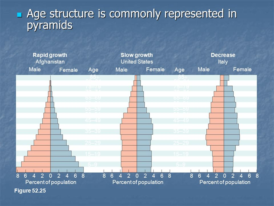 Age structure is commonly represented in pyramids Age structure is commonly represented in pyramids Figure 52.25 Rapid growth Afghanistan Slow growth