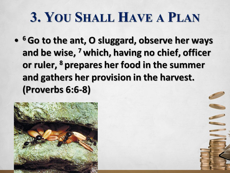 3. Y OU S HALL H AVE A P LAN 6 Go to the ant, O sluggard, observe her ways and be wise, 7 which, having no chief, officer or ruler, 8 prepares her foo