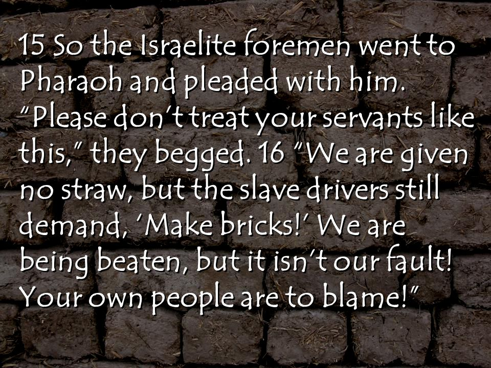 15 So the Israelite foremen went to Pharaoh and pleaded with him.