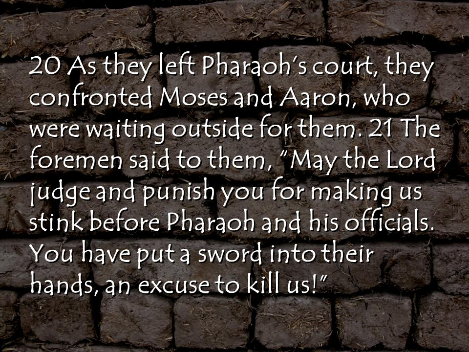 20 As they left Pharaoh's court, they confronted Moses and Aaron, who were waiting outside for them.