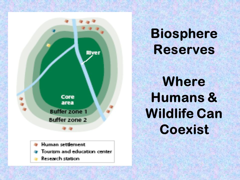 Biosphere Reserves Where Humans & Wildlife Can Coexist