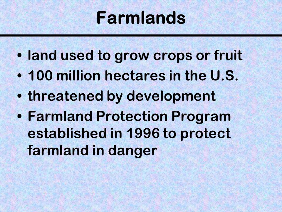 Farmland Near the Suburbs of Mililani, Hawaii