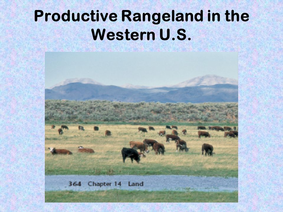 Productive Rangeland in the Western U.S.