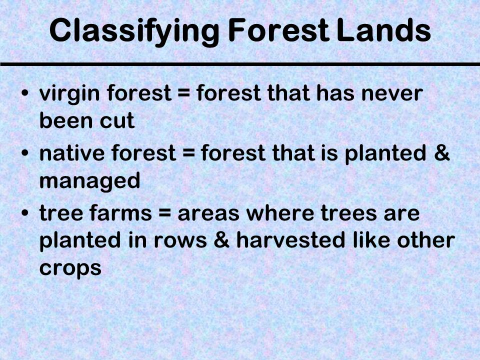 Harvesting Trees clear-cutting = the process of removing all the trees from an area of land selective cutting = the process of cutting & removing only middle-aged or mature trees Which is more expensive, but considered less destructive?