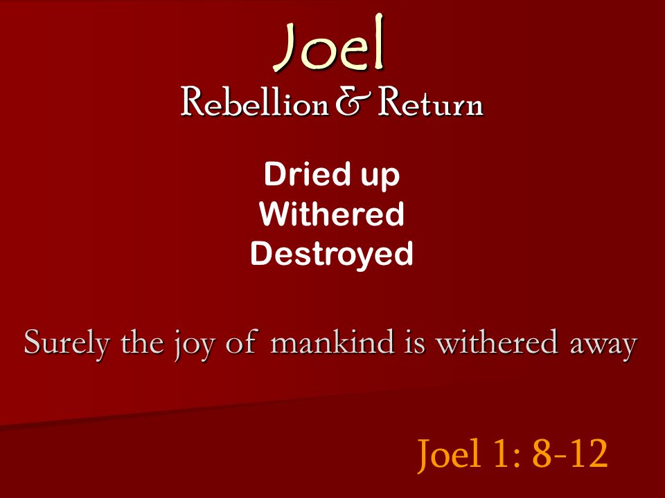 Joel Rebellion & Return Joel 1: 8-12 Dried up Withered Destroyed Surely the joy of mankind is withered away