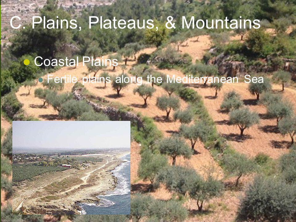 C. Plains, Plateaus, & Mountains Coastal Plains Fertile plains along the Mediterranean Sea