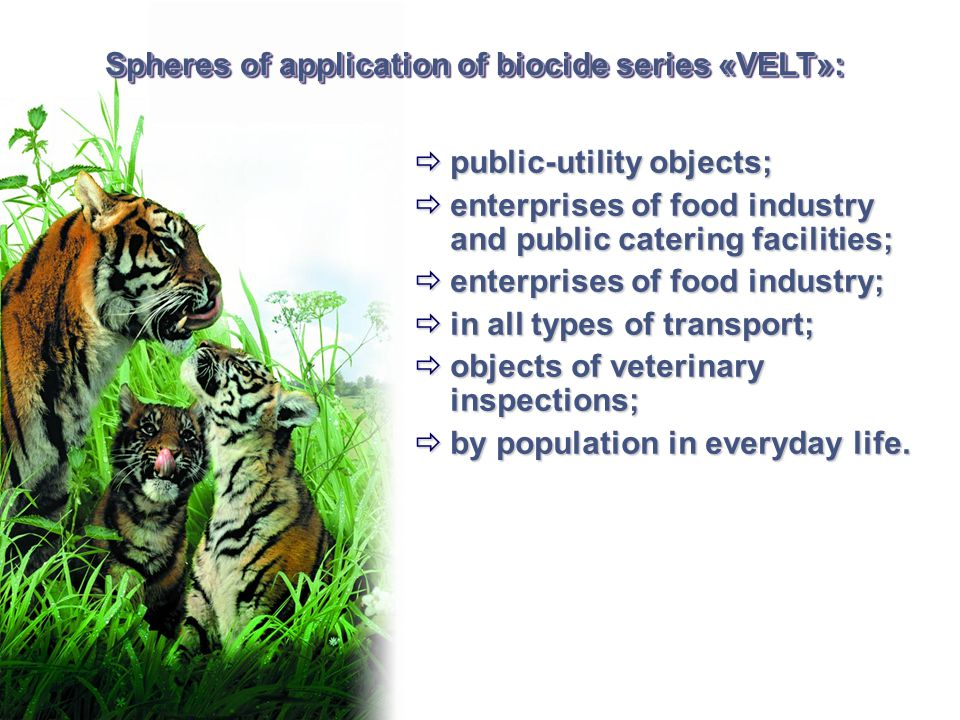 Spheres of application of biocide series «VELT»:  public-utility objects;  enterprises of food industry and public catering facilities;  enterprise