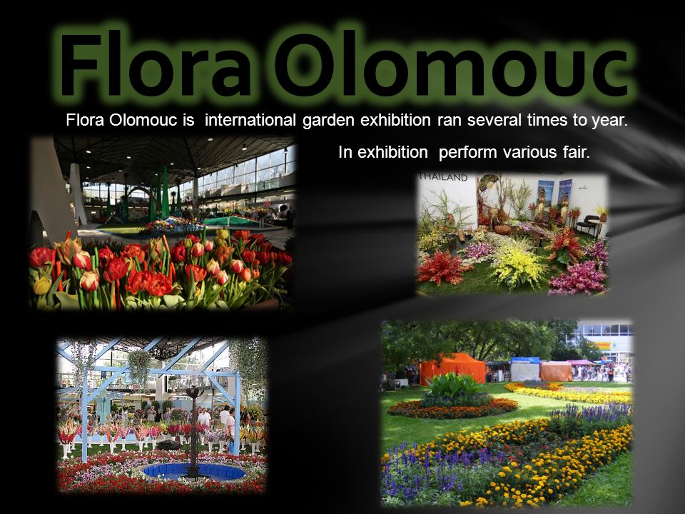 Flora Olomouc is international garden exhibition ran several times to year. In exhibition perform various fair.