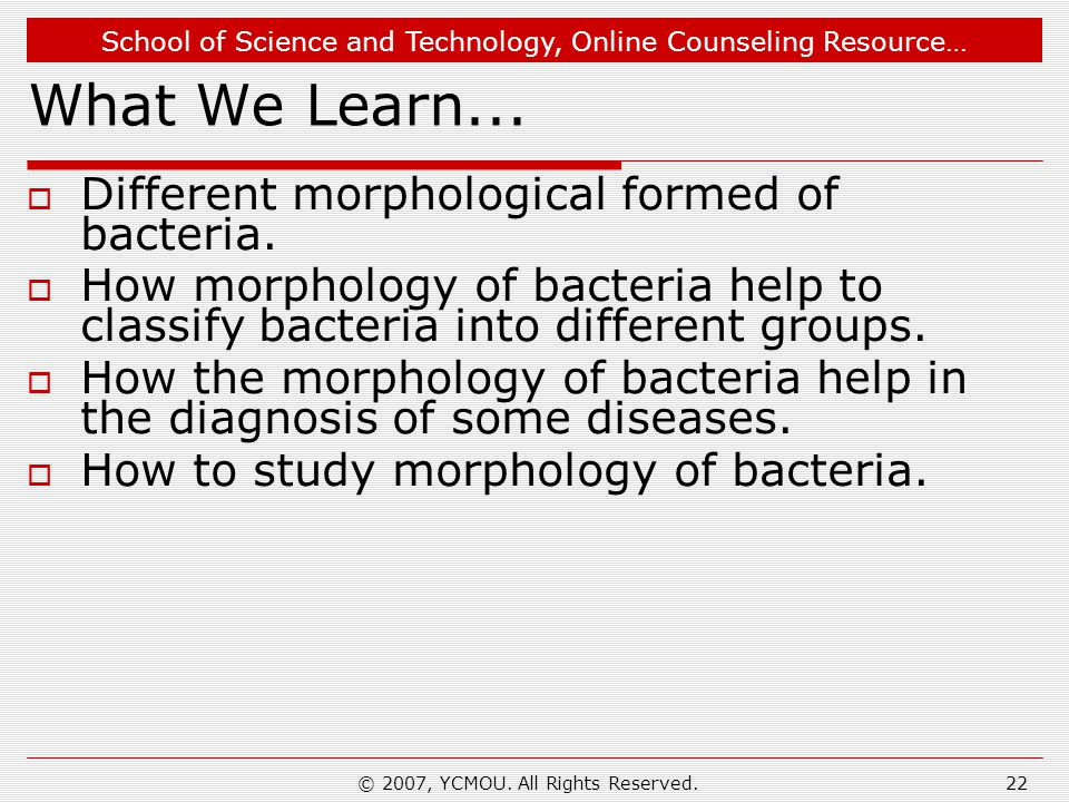 School of Science and Technology, Online Counseling Resource… © 2007, YCMOU. All Rights Reserved.22 What We Learn...  Different morphological formed