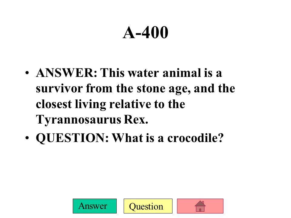 Question Answer A-200 ANSWER: These sea mammals are sometimes called fish or even whales, but are neither.