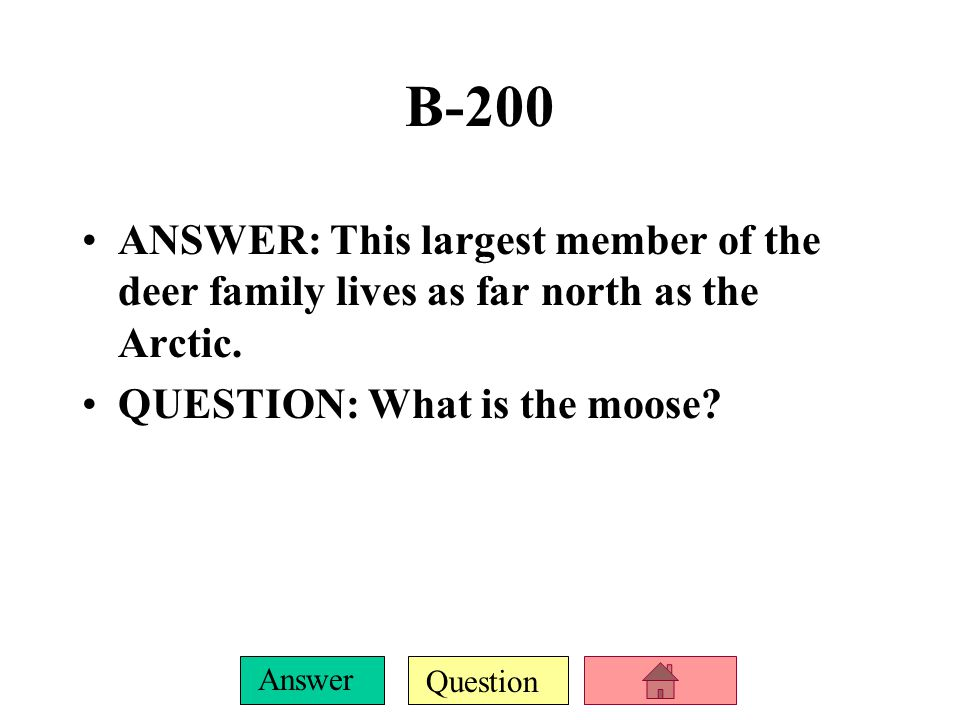 Question Answer A-1000 ANSWER: A large whale's heart beats 9, 27 or 81 times a minute, while at rest.