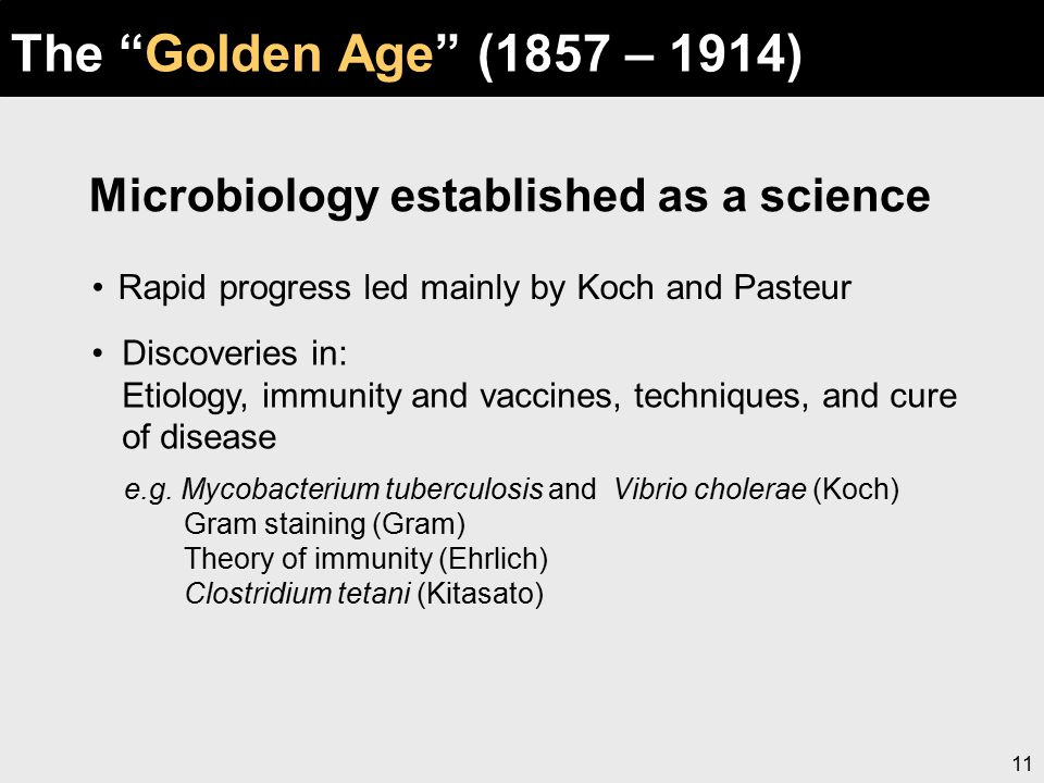"""11 The """"Golden Age"""" (1857 – 1914) Rapid progress led mainly by Koch and Pasteur Microbiology established as a science Discoveries in: Etiology, immuni"""