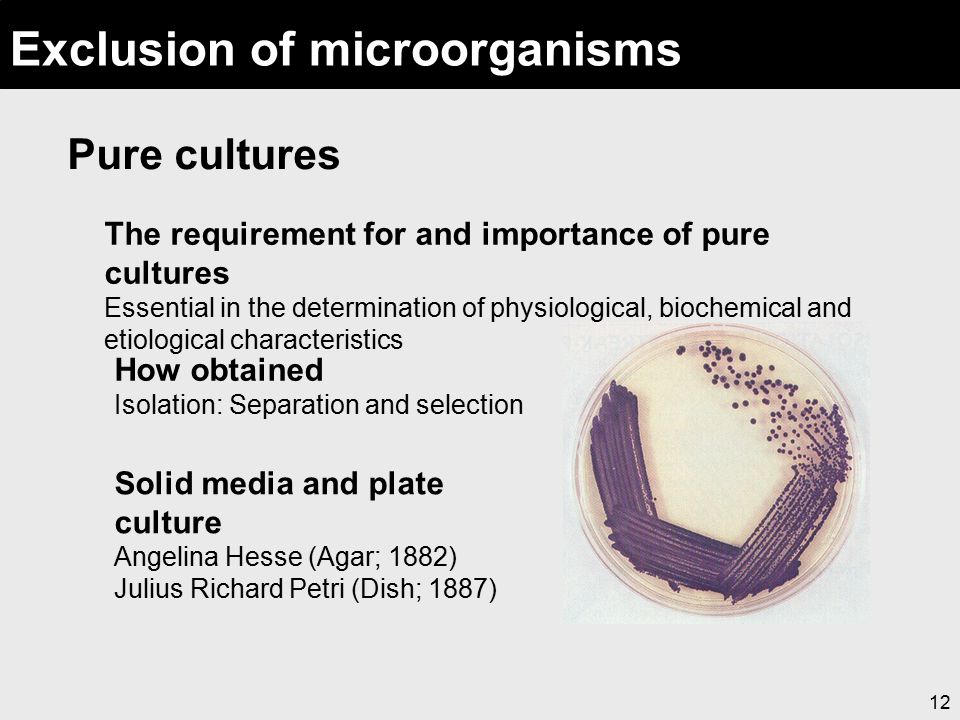 12 Exclusion of microorganisms Pure cultures The requirement for and importance of pure cultures Essential in the determination of physiological, bioc