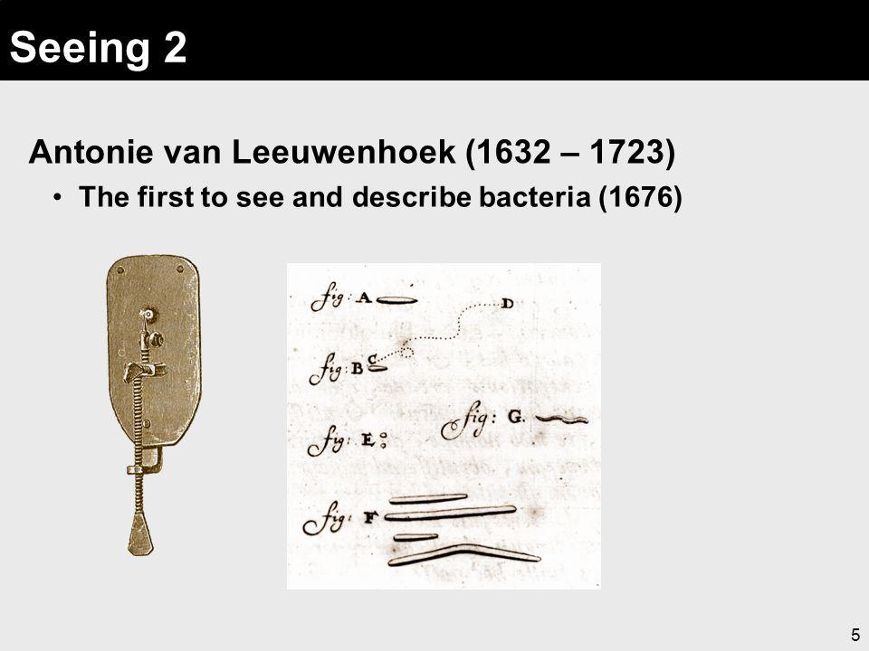 5 Seeing 2 Antonie van Leeuwenhoek (1632 – 1723) The first to see and describe bacteria (1676)