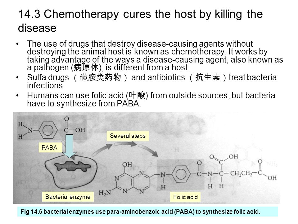 14.3 Chemotherapy cures the host by killing the disease The use of drugs that destroy disease-causing agents without destroying the animal host is known as chemotherapy.