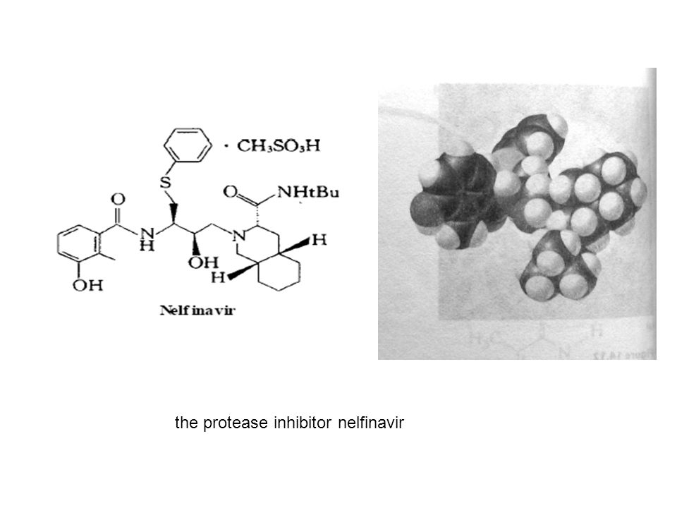 the protease inhibitor nelfinavir
