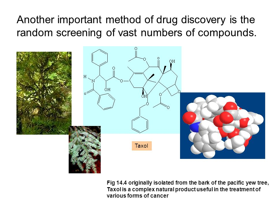 Another important method of drug discovery is the random screening of vast numbers of compounds.