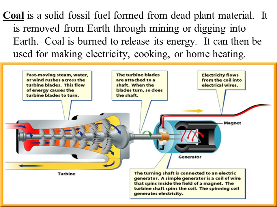 Coal is a solid fossil fuel formed from dead plant material.