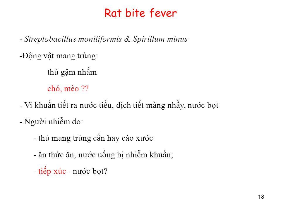 18 Rat bite fever - Streptobacillus moniliformis & Spirillum minus -Động vật mang trùng: thú gậm nhấm chó, mèo ?? - Vi khuẩn tiết ra nước tiểu, dịch t