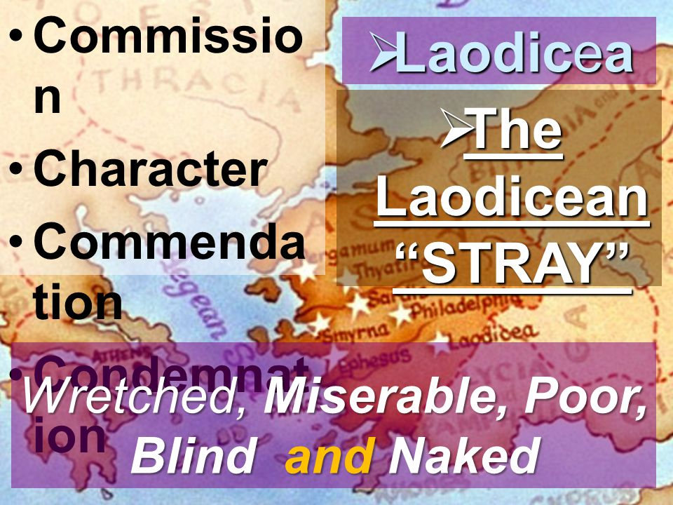 Commissio n Character Commenda tion Condemnat ion  Laodicea  The Laodicean STRAY Wretched, Miserable, Poor, Blind and Naked