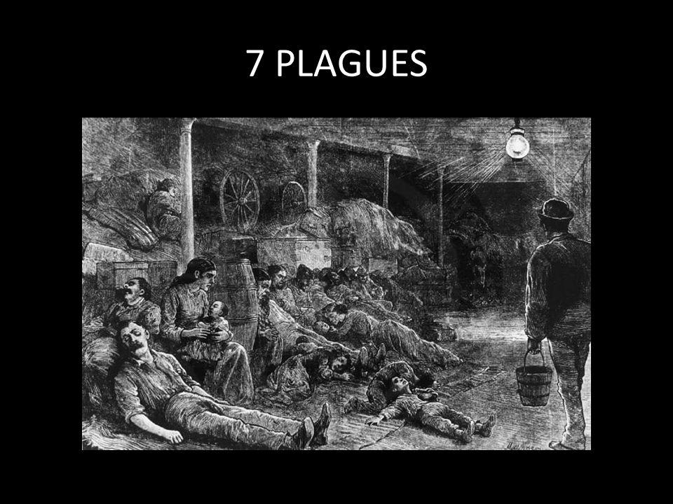 7 PLAGUES