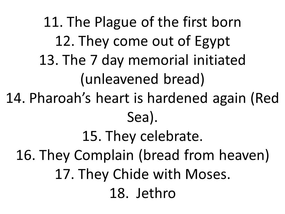 11. The Plague of the first born 12. They come out of Egypt 13.