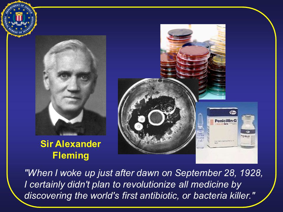 Sir Alexander Fleming When I woke up just after dawn on September 28, 1928, I certainly didn t plan to revolutionize all medicine by discovering the world s first antibiotic, or bacteria killer.