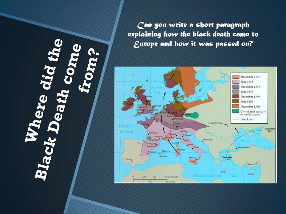 Where did the Black Death come from? Can you write a short paragraph explaining how the black death came to Europe and how it was passed on?