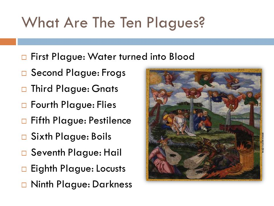 What Are The Ten Plagues?  First Plague: Water turned into Blood  Second Plague: Frogs  Third Plague: Gnats  Fourth Plague: Flies  Fifth Plague: