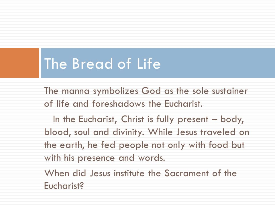 The manna symbolizes God as the sole sustainer of life and foreshadows the Eucharist. In the Eucharist, Christ is fully present – body, blood, soul an