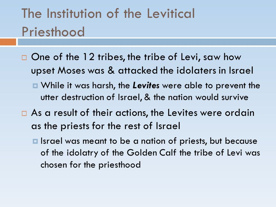 The Institution of the Levitical Priesthood  One of the 12 tribes, the tribe of Levi, saw how upset Moses was & attacked the idolaters in Israel  Wh