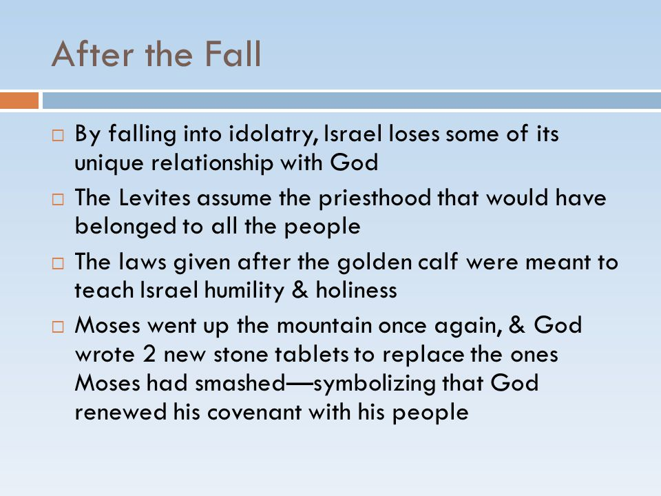 After the Fall  By falling into idolatry, Israel loses some of its unique relationship with God  The Levites assume the priesthood that would have b