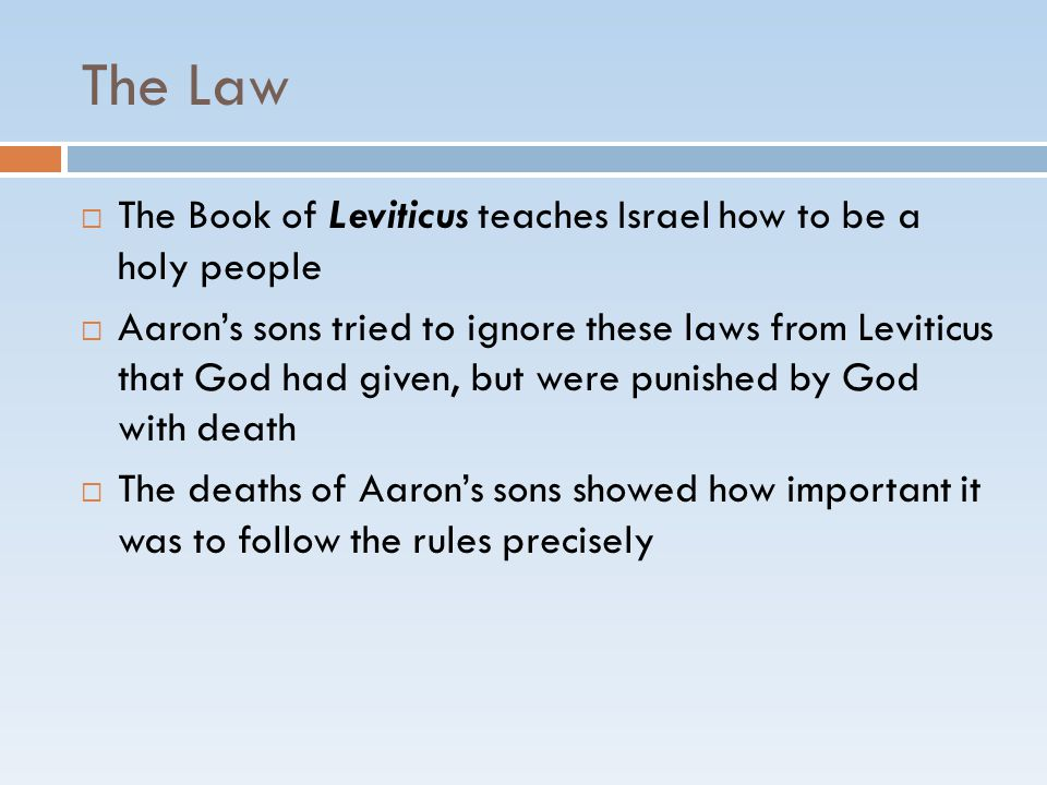 The Law  The Book of Leviticus teaches Israel how to be a holy people  Aaron's sons tried to ignore these laws from Leviticus that God had given, bu