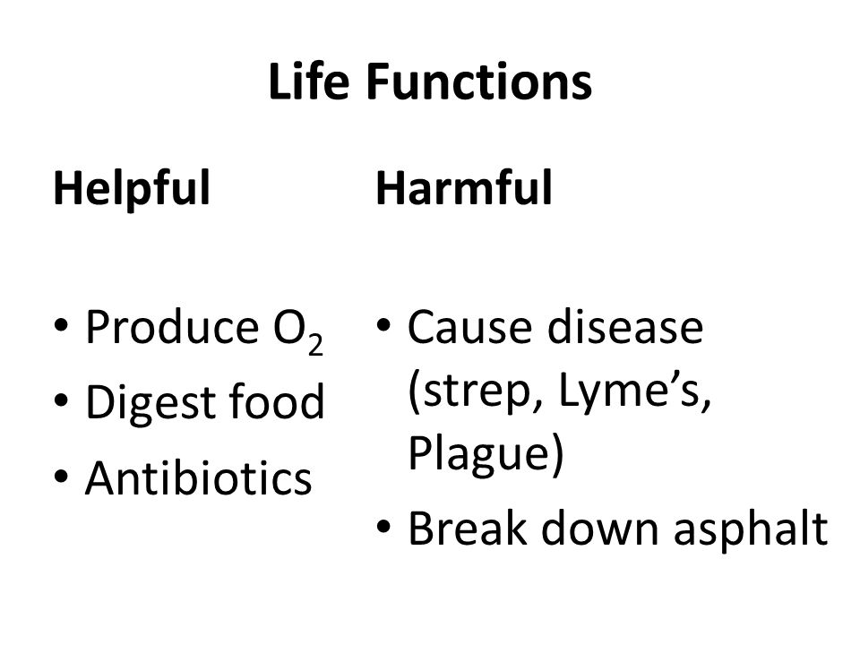 Life Functions Helpful Produce O 2 Digest food Antibiotics Harmful Cause disease (strep, Lyme's, Plague) Break down asphalt
