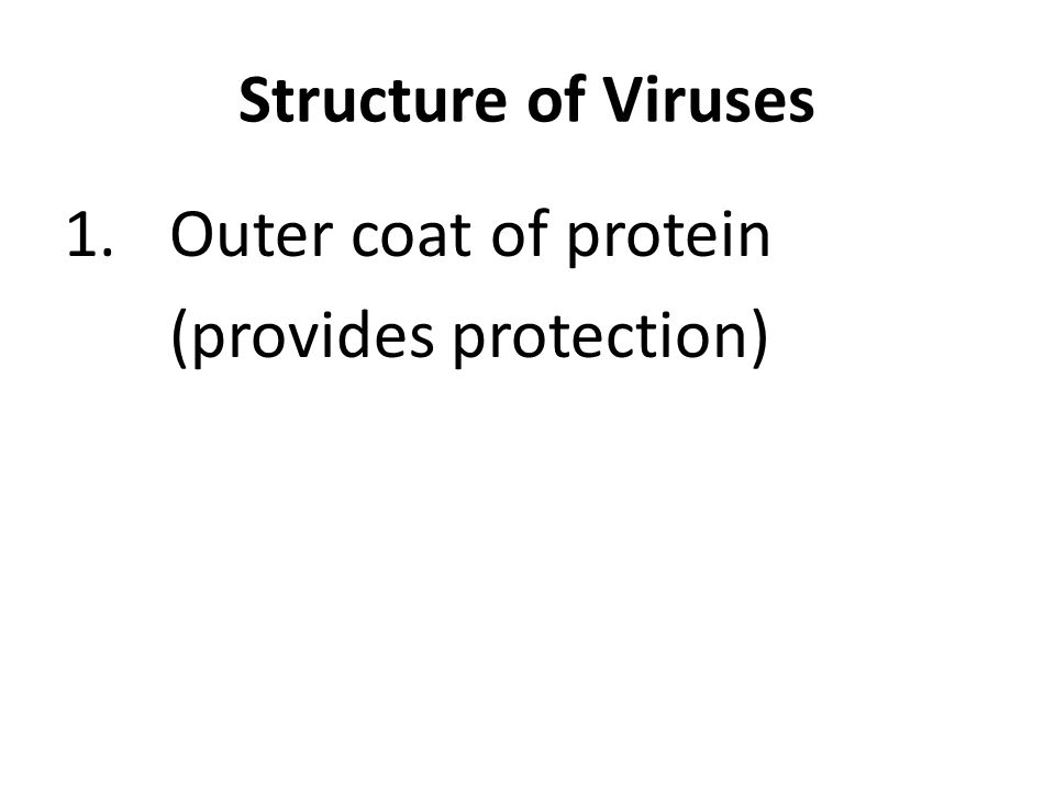 1.Outer coat of protein (provides protection)